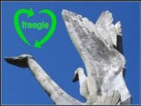 Profile picture for Wellingborough Freegle